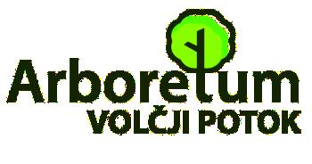 logo_avp_w350.png